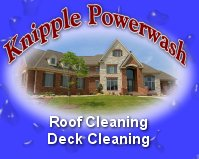 Roof Cleaning professional service